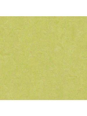 Marmoleum Click Spring Buds flis