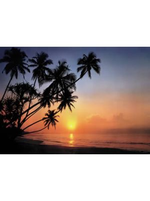 KOMAR TROPICAL SUNSET 8-030