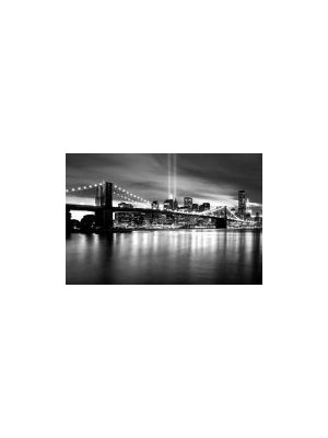 BROOKLYN BRIDGE SORT/HVITT DK-BW003