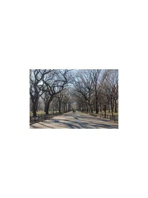 POETS WALK NEW YORK DK-PWC002