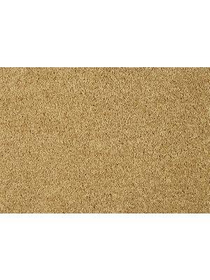 smartstrand-lounge-371-goud-teppe