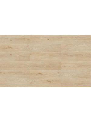 Wicanders Wood Go Argent Oak 501096